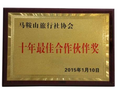 十年最佳合作伙伴奖